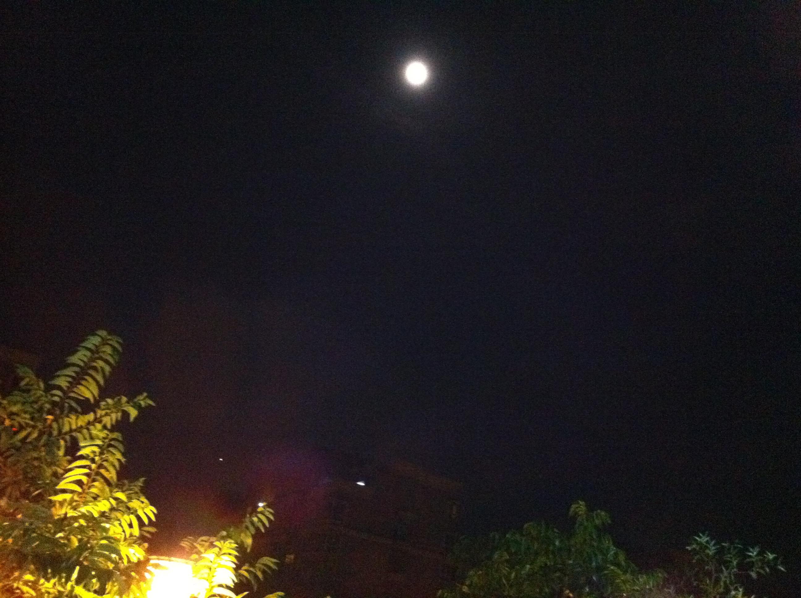 今晚月亮圆又圆