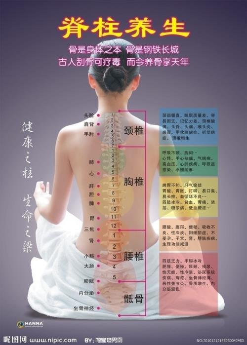 脊椎养生 - wangmingzhan123 - wangmingzhan123的博客