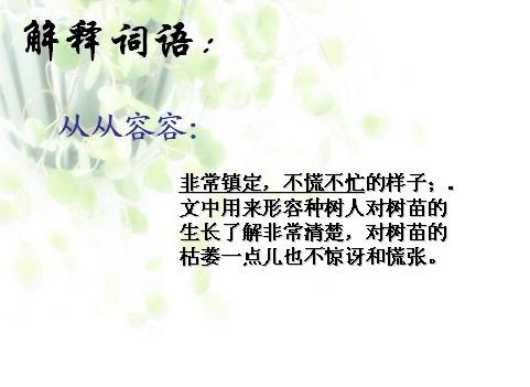 六年级语文下册《桃花心木》教学课件