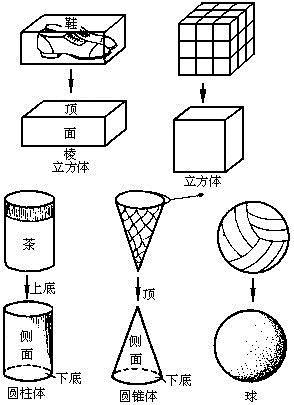 第四讲 立体图形的认识