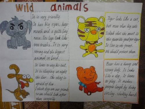 有关动物的英文小报