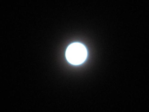 """""""月亮粑粑"""